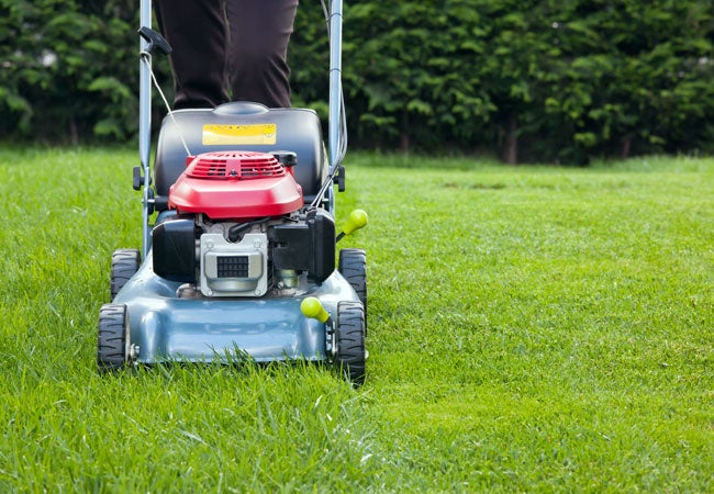How to Mow a Lawn