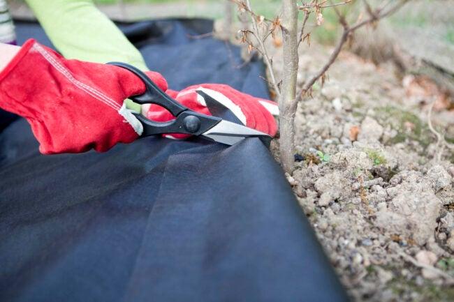 Landscape Fabric Usage Tips