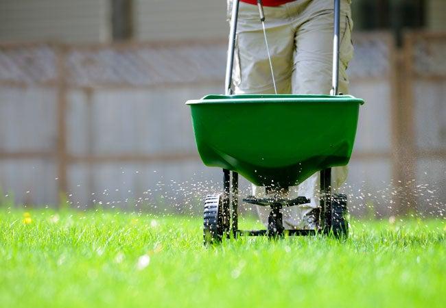 Types of Fertilizer Every Gardener Should Know