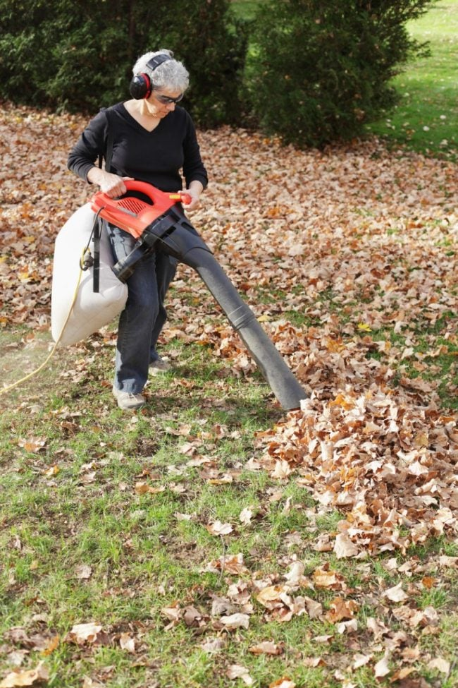 The Best Leaf Vacuum for Tidying Small Yards and Gardens