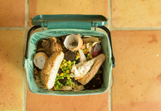 Top Tips for Indoor Composting