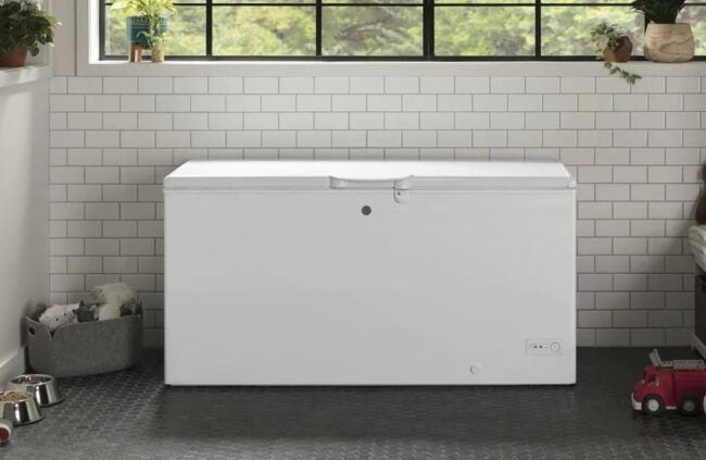 The Best Chest Freezer Options