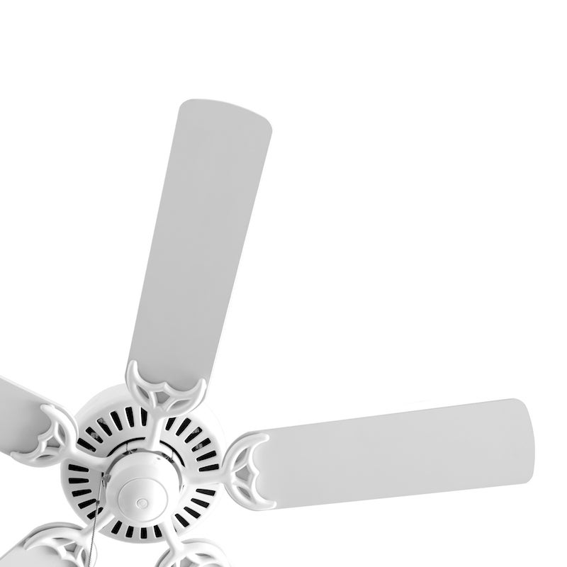 Video: Your Ceiling Fan Can Keep You Warm This Winter