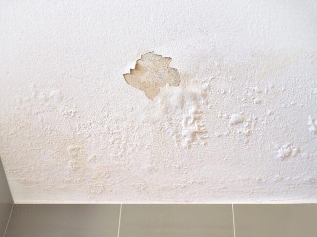 bubbling paint in wet bathroom