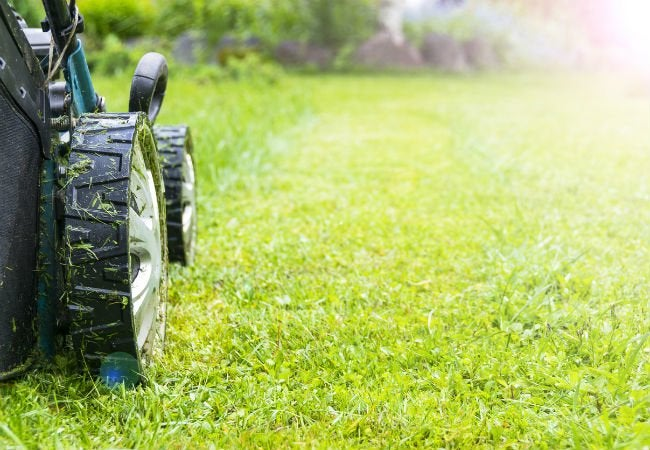 The Best Electric Mowers for Your Lawn