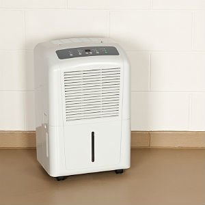 Shopping for the Best Dehumidifiers for Basements? Start Here