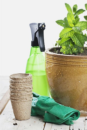 10 Ways to Use Epsom Salt in the Garden