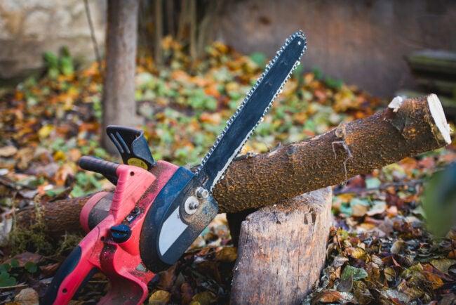 Chainsaw in garden