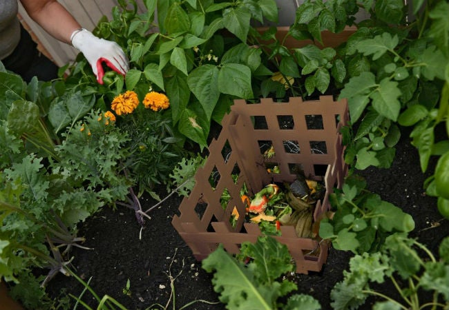 The Benefits of Keyhole Gardening