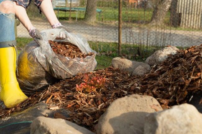 Burning Leaves Choose a Proper Burning Site