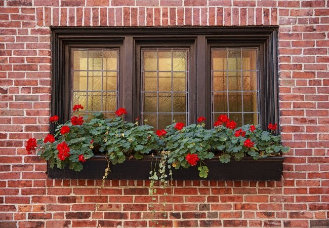All You Need to Know About Tinted Home Windows