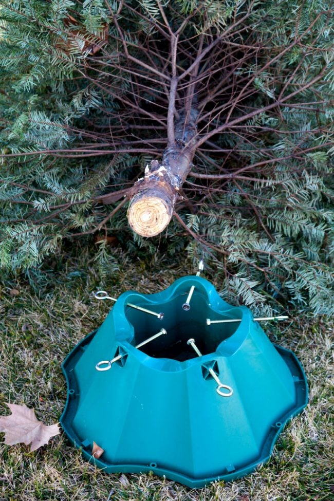 The Best Christmas Tree Stands, According to Happy Customers