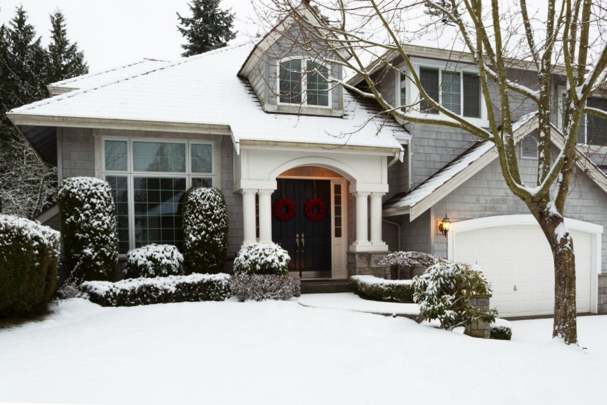 How to Prevent and Treat Snow Mold in the Lawn