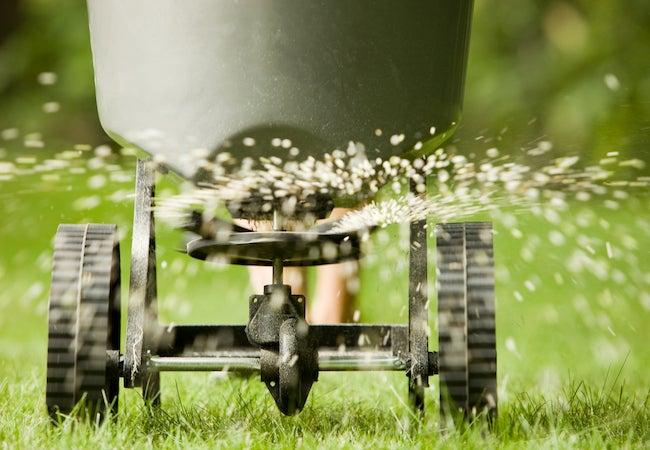 Organic VS Synthetic Fertilizer