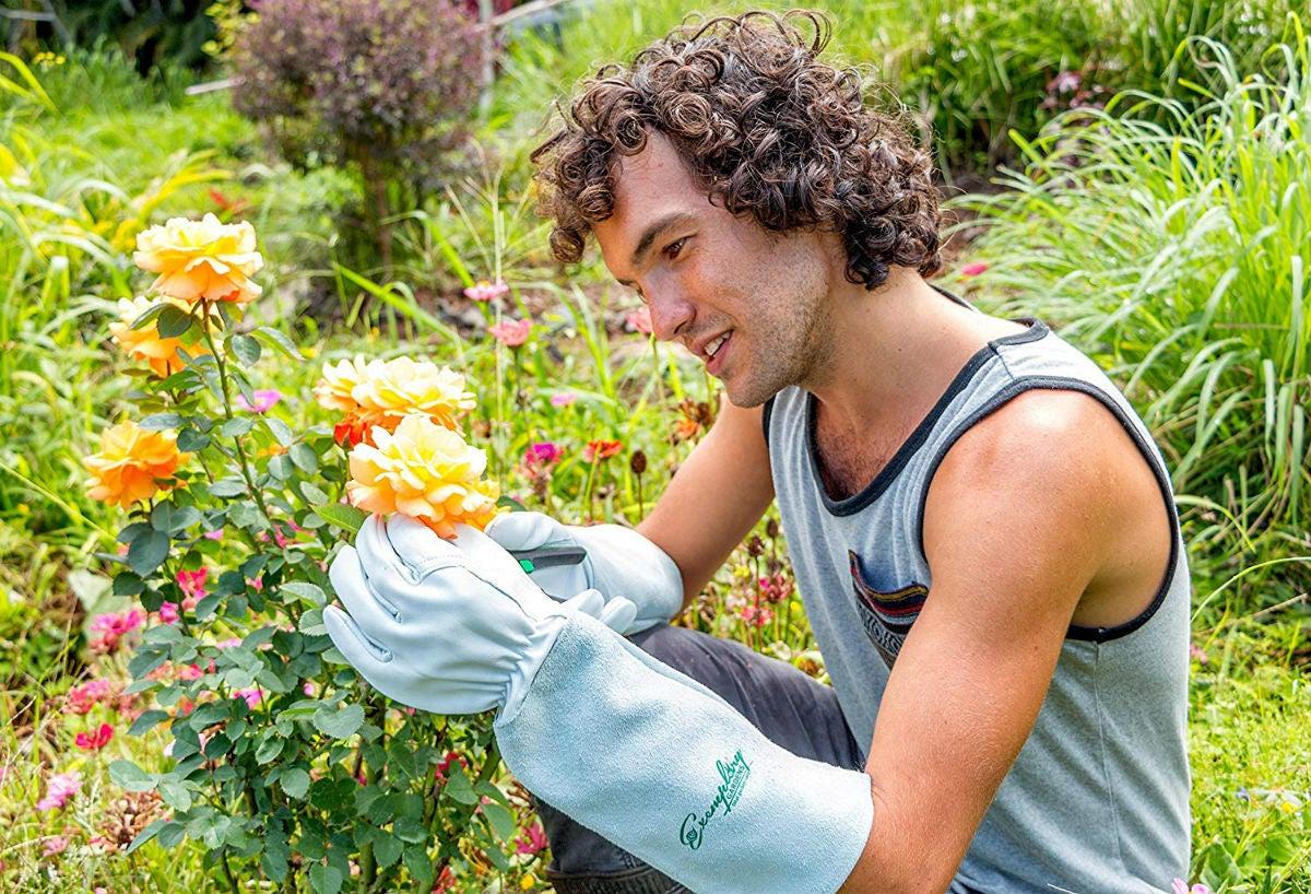The Best Gardening Gloves: Exemplary Gardens