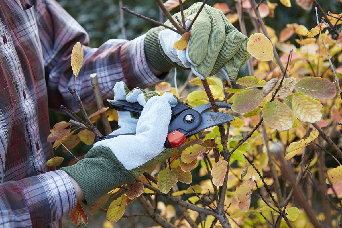 最好的园艺手套,根据快乐园丁