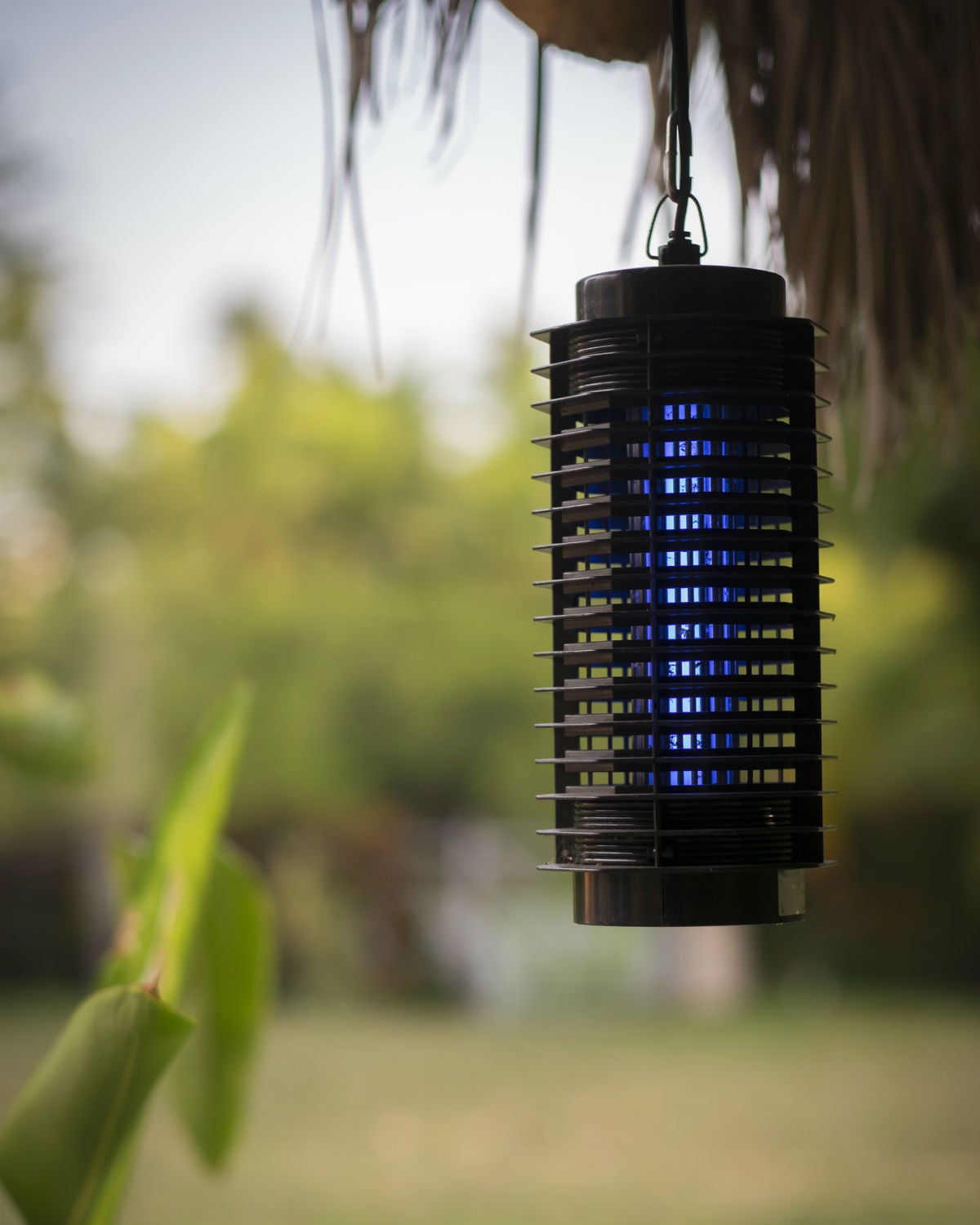The Best Bug Zappers for Indoors and Out