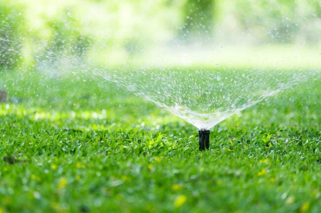 How Long to Water Lawn Water at Right Times