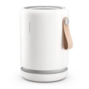 The Best Air Purifier Option: Molekule Air Mini+ Small Room Air Purifier