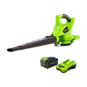 The Best Leaf Vacuum Option: Greenworks 40V Cordless Leaf Vacuum