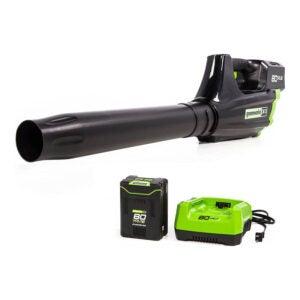 The Best Leaf Blower Option: Greenworks Pro 80V Cordless Leaf Blower
