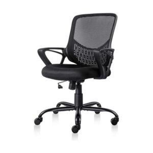 The Best Office Chair Option: Smugdesk Ergonomic Office Chair
