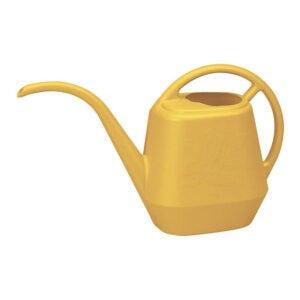 最好的喷壶选择:开花喷壶水仪式