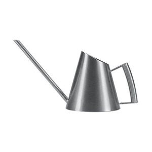 The Best Watering Can Option: Fasmov 13.5 Oz Stainless Steel Watering Can