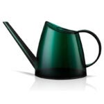 The Best Watering Can Option: WhaleLife Indoor Watering Can 40oz