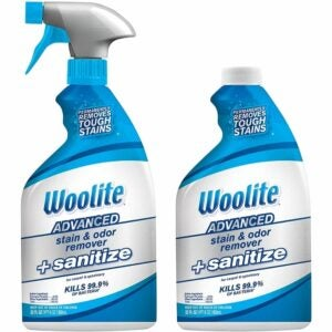The Best Carpet Stain Remover Option: Woolite Advanced Stain & Odor Remover + Sanitize