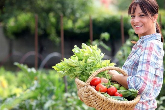 Why (and How) You Should Plant a Victory Garden This Season