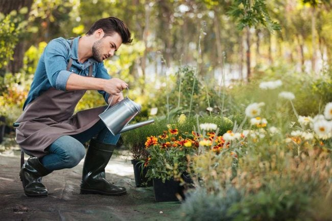 The Best Watering Can Options