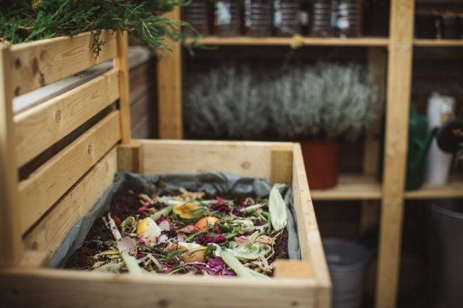 Biodegradable vs. Compostable: Bakyard Compost