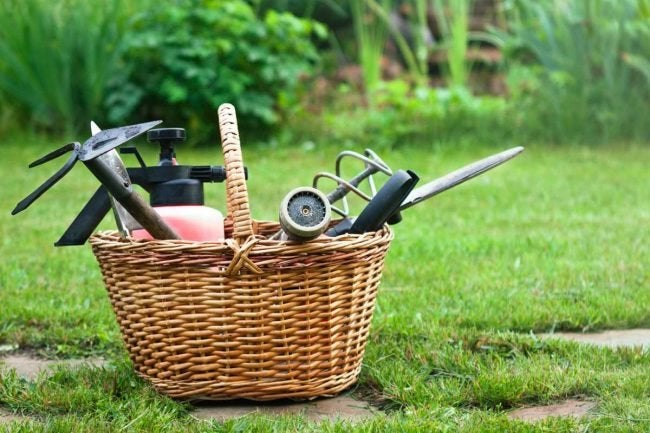 The Best Weeding Tools for Your Garden