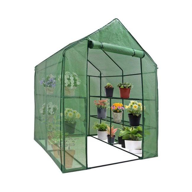 The Best Compact Greenhouse Option: Nova Mini Walk-In Greenhouse