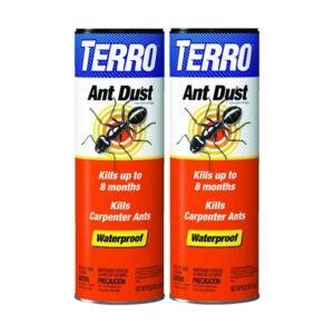 The Best Ant Killer Option: 2-Pack TERRO 600 1-Pound Ant Killer Dust