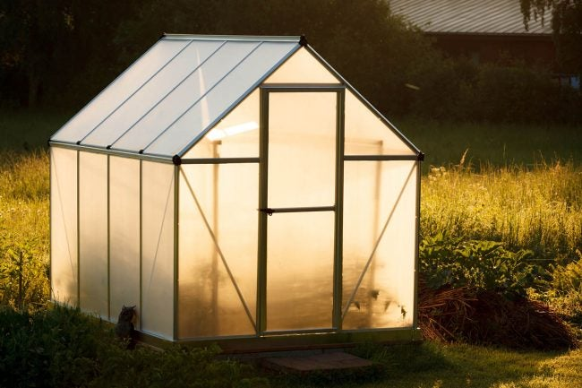 The Best Compact Greenhouse Options