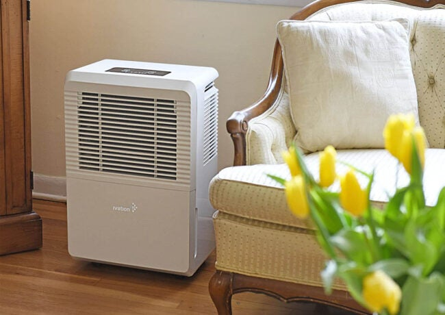 The Best Dehumidifier Options