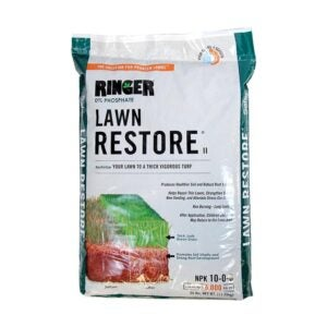 The Best Lawn Fertilizer Option: Safer Brand Lawn Restore II