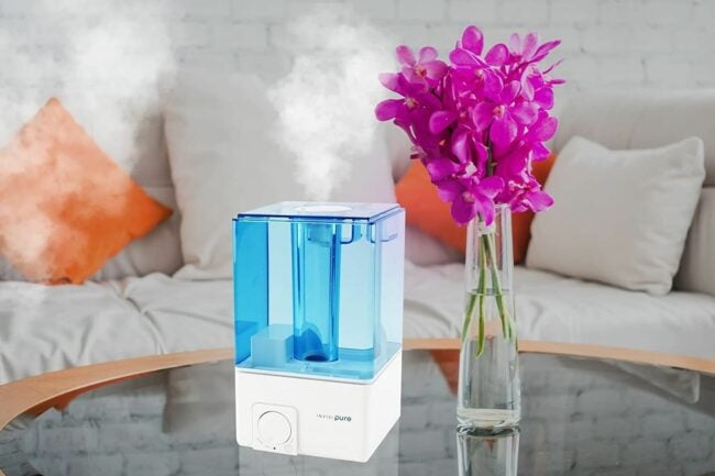 The Best Humidifiers Option