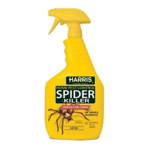 最好的蜘蛛杀手选择哈里斯