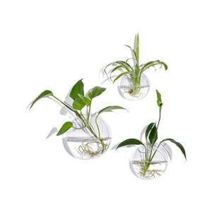 The Best Hanging Planter Option: KnikGlass Set of 3 Wall Hanging Terrariums