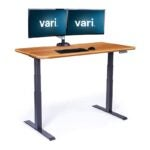 The Best Sit-Stand Desk Option: Vari Electric Standing Desk