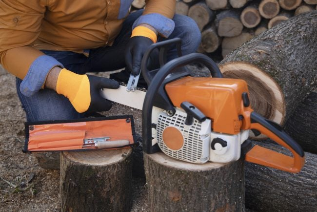 Buyer's Guide: The Best Small Chainsaws