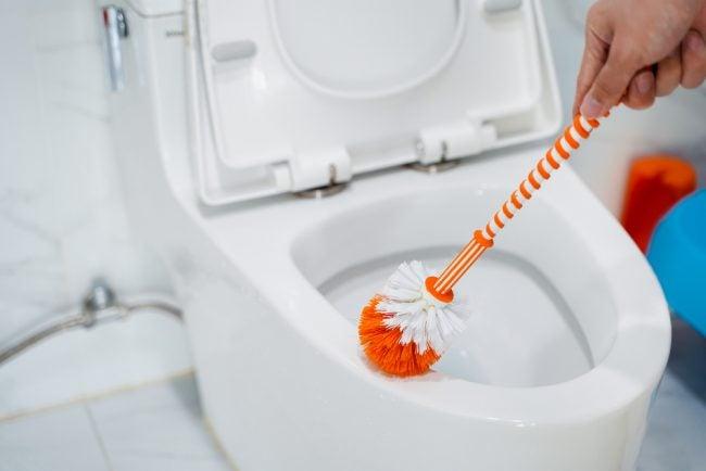 Best Toilet Brush