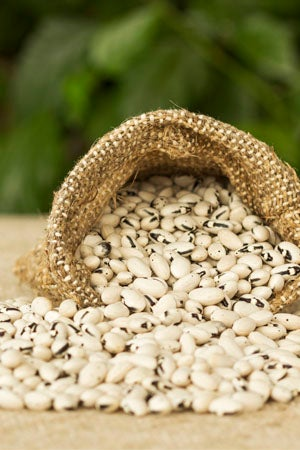 Do Seeds Expire and How to Store the Seeds