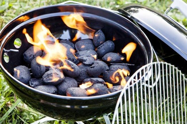 常见问题关于您的新最佳木炭