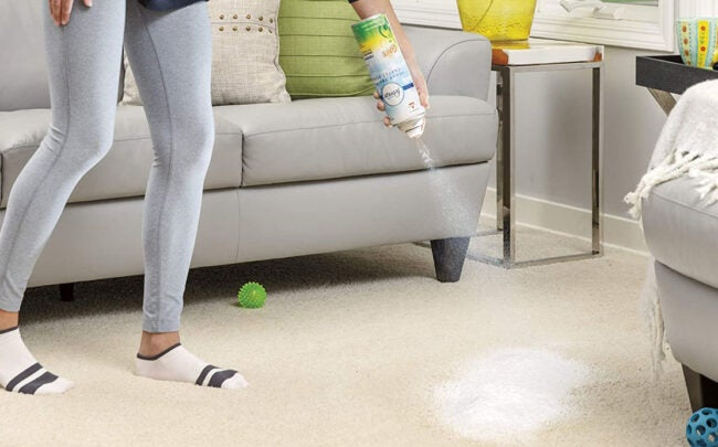 The Best Carpet Deodorizer Options