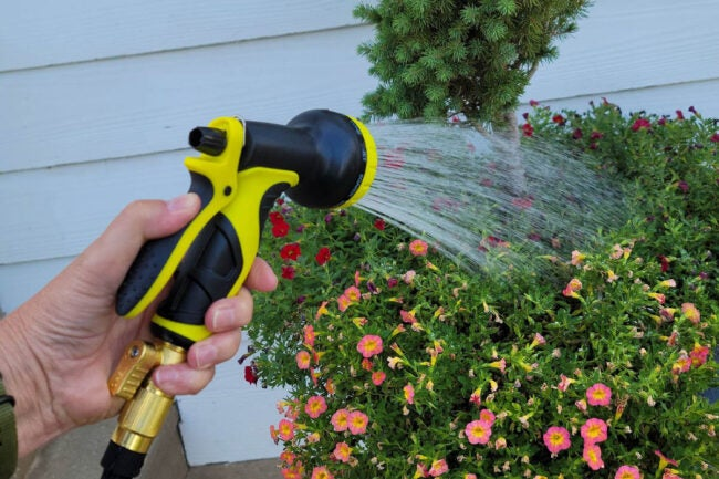 The Best Expandable Hoses Options