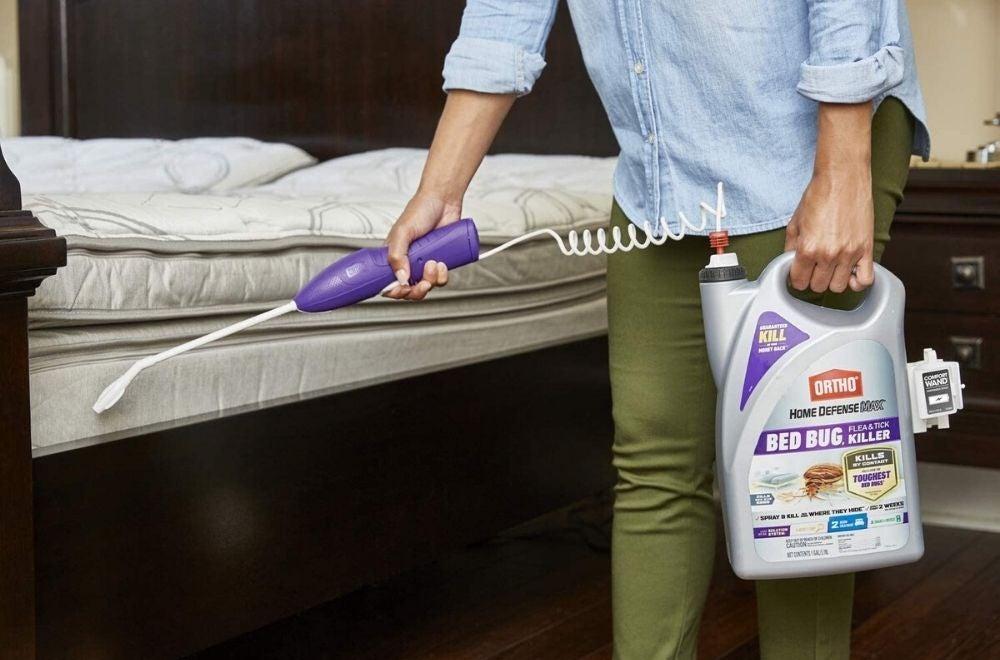 The Best Bed Bug Spray for DIY Pest Control - Bob Vila